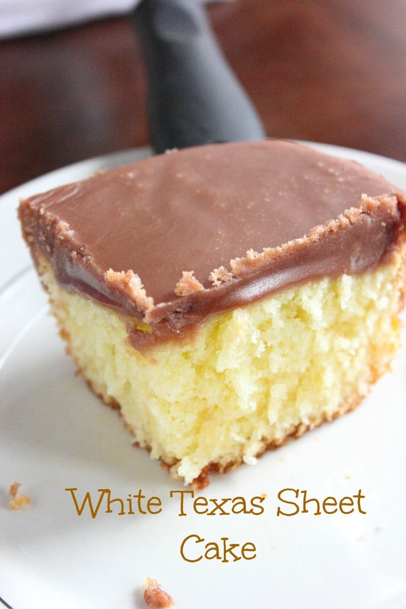 White Texas Sheet Cake with Chocolate Fudge Frosting Brown Sugar
